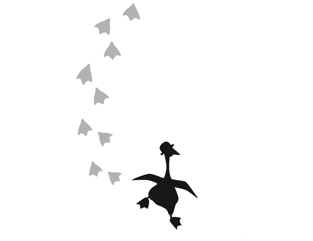 The Charismatic Goose | Pack of 2 T-Shirts | By Cotton Traders