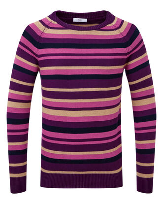 Rich Violet Stripe Cotton Crew Neck Jumper