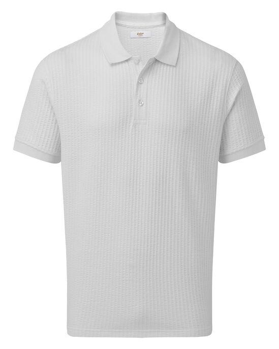 Short Sleeve Seersucker Polo Shirt