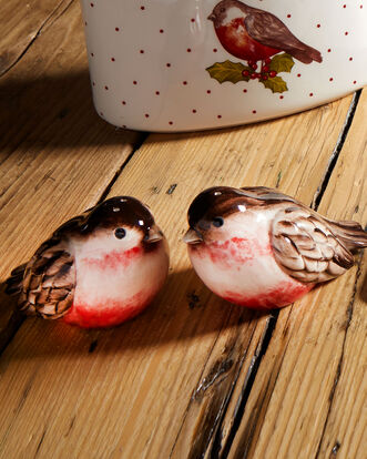 Red Robin Salt and Pepper Shakers