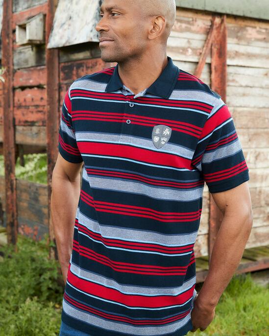 Short Sleeve Birdseye Variated Stripe Polo Shirt