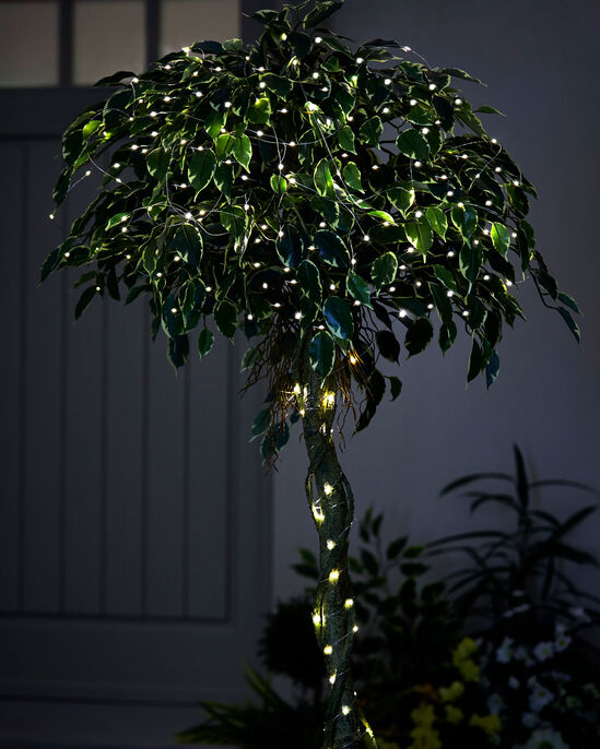 100 Firefly LED Lights