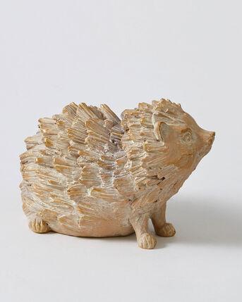 Driftwood Hedgehog