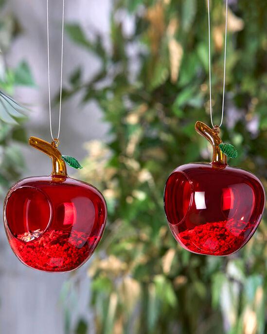 Apple Bird Feeders 2 Pack
