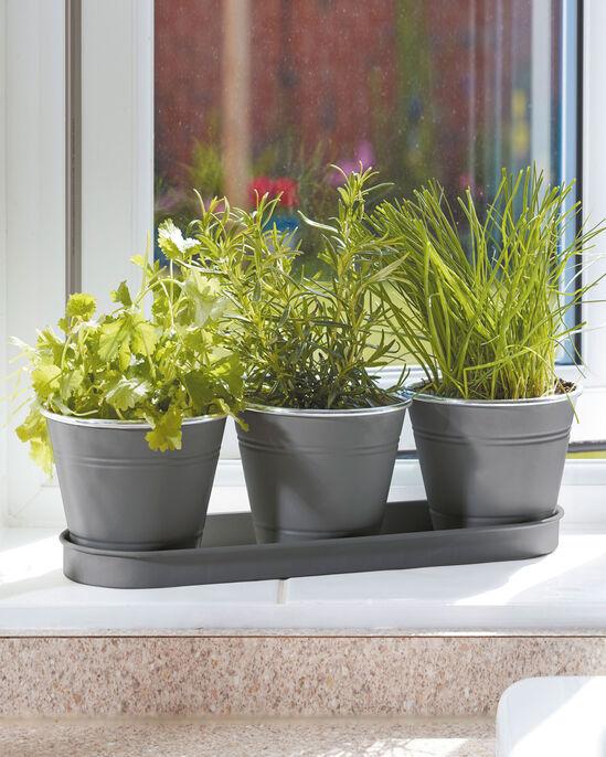 Set of 3 Windowsill Herb Pots