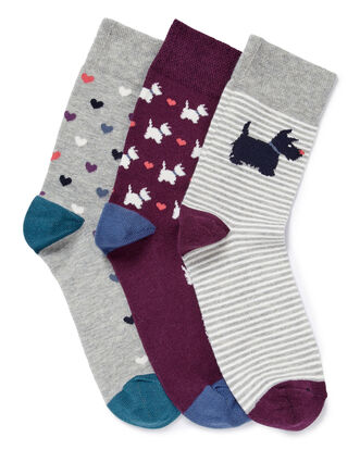 3 Pk Comfort Top Dog Socks