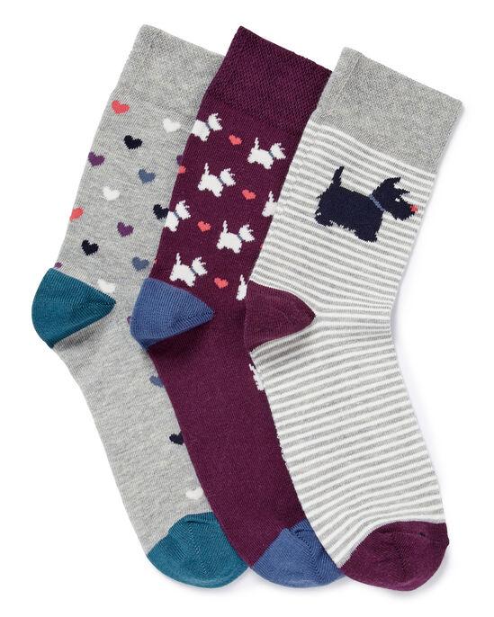 Pack of 3 Comfort Top Dog Socks
