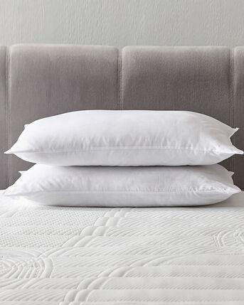 Pair of Anti Allergy Pillows