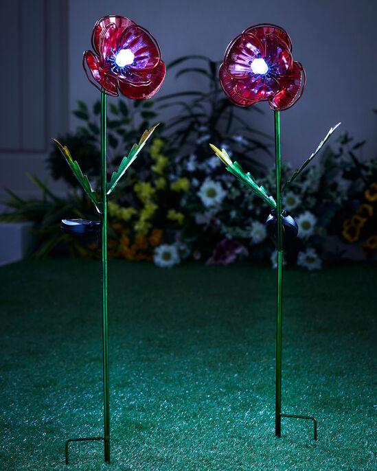 Solar Poppy 2 Pack
