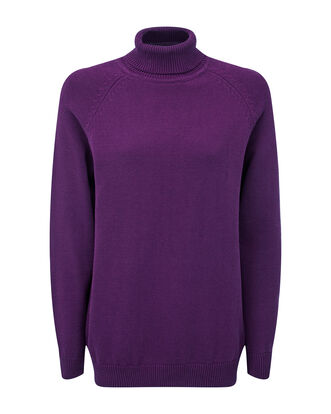Cotton Roll Neck Jumper