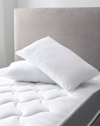 Pair of Soft to Touch Pillows