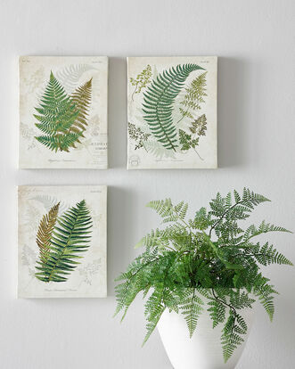 Set of 3 Small Leaf Canvases