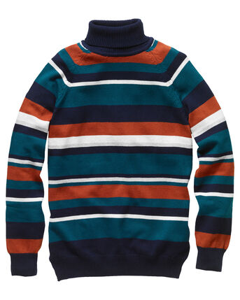 Stripe Cotton Roll Neck Jumper