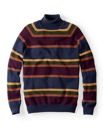 Cotton Stripe Roll Neck Jumper