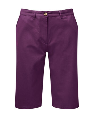 Wrinkle Free Adjustable Waist Shorts