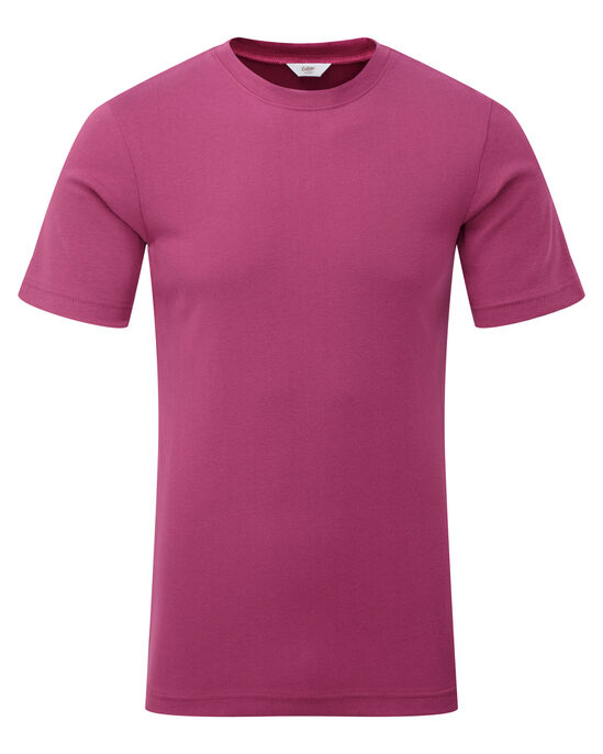 Short Sleeve Base Layer Top